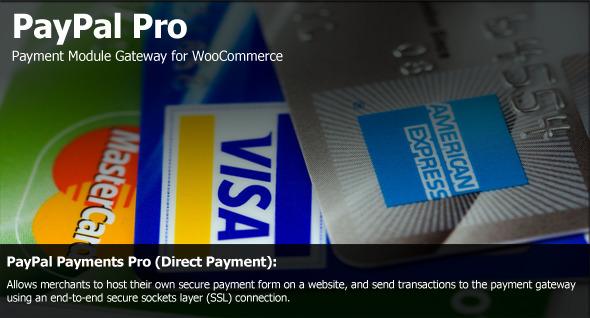 PayPal-Pro-Payment-Module