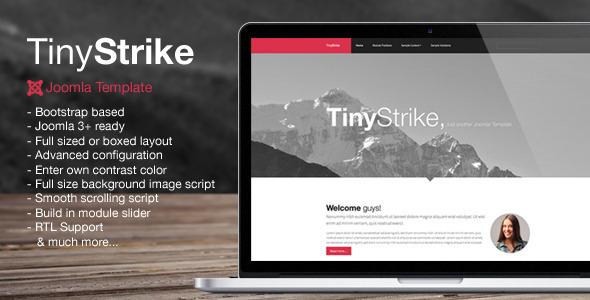 TinyStrike
