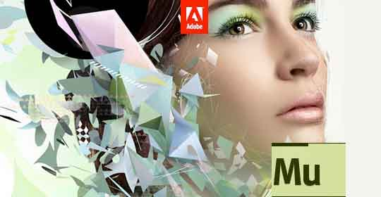 30+ High Quality Responsive Adobe Muse Templates
