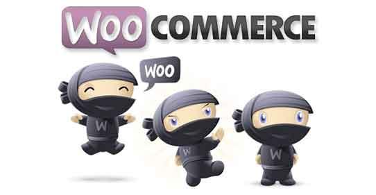 40+ Powerful WordPress WooCommerce Plugins, Modules