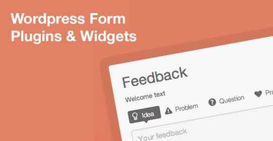 30+ Most Popular WordPress Form Plugins and Widgets (2013 Edition)