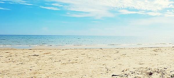 beach-twitter-background