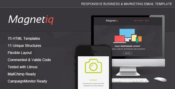 magnetiq-responsive